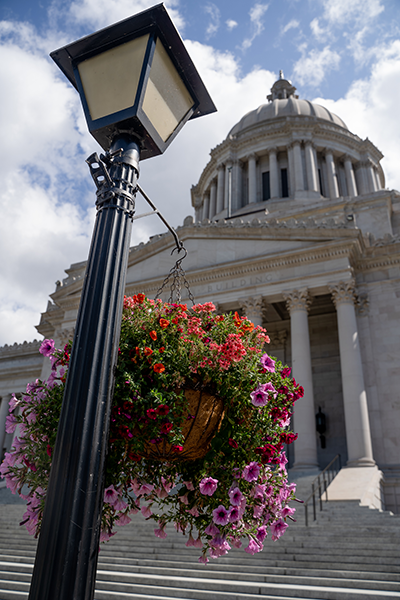 A hanging basket of flowers is suspended from a lamp post with the Capitol Building in the background.