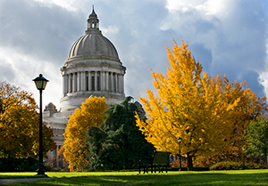 A fall scene with trees and the Washington State Capitol Building in the background