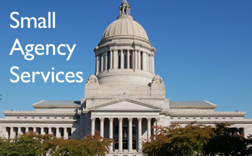 Small Agency Services